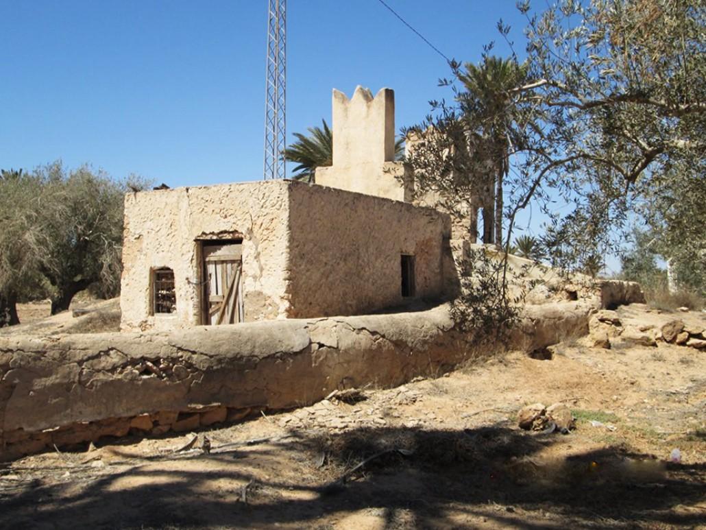 L'eau : Une ressource en péril à Djerba